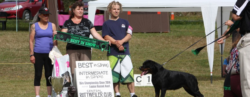 Vodka wins best in show under Louise Russell (ubersein Kennels Australia